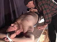 Tied Up Bear Slave Fucks