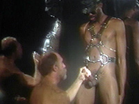 Mature black kinkster is sucked off
