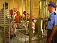 Horny gay bear prisoners threesome